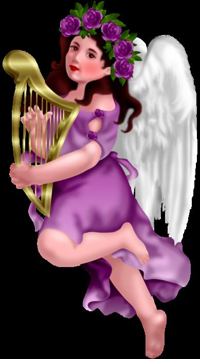 COOKIES ANGELES 6bbdbf7e